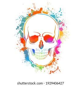 Multi-colored skull. Mixed media. T-shirt print. Vector illustration
