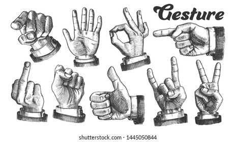 Multiple Male Caucasian Hand Gesture Set Vector. Collection Of Different Arm Gesture. Ok And Peace, Palm And Fist, Rock Horns And Showing Indicating Signal. Hand Drawn Cartoon Illustration