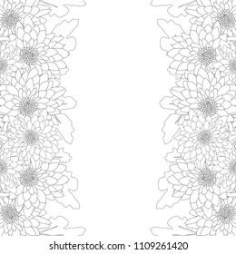 Mum, Chrysanthemum Flower Outline Border isolated on White Background. Vector Illustration.
