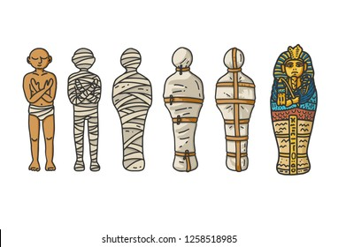 Mummy creation; A six step process showing how the ancient egyptians wrapping the mummies during embalming. Vector illustration in hand draw cartoon style.