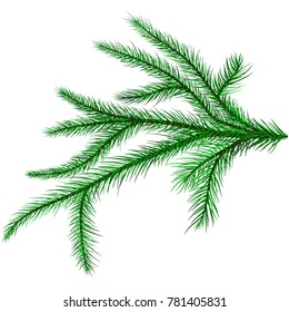 The mural image of a branch of a coniferous tree