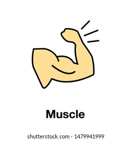 muscle or gym icon vector. perfect biceps ,muscle, bodybuilder icon vector. website design and mobile design.