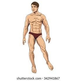 Muscle man. Strong man on a white background. Vector illustration.