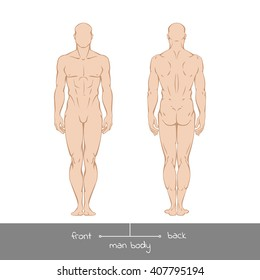 Muscular young man from front and back view. Healthy male body shapes outline colored vector illustration with the inscription: front and back. Vector illustration of a human figure in linear style