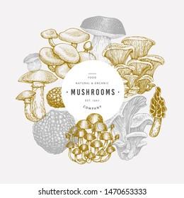 Mushroom design template. Hand drawn vector food illustration. Engraved style. Vintage mushrooms different kinds background.