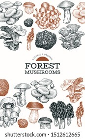 Mushroom design template. Hand drawn vector food illustration. Engraved style. Vintage mushrooms different kinds background.