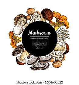 Mushroom hand drawn vector frame. Isolated Sketch organic food drawing template. Champignon, morel, truffle, chanterelle, shiitake. Great for menu label product packaging