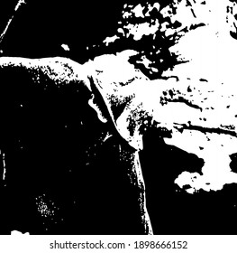 Mushroom on the background of tree bark. Vector illustration. Eps10.