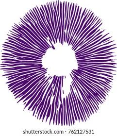 Mushroom Spore Print - Psilocybe Cubensis