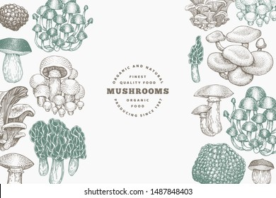 Mushrooms design template. Vector hand drawn illustrations. Mushroom in vintage style. Autumn food background.