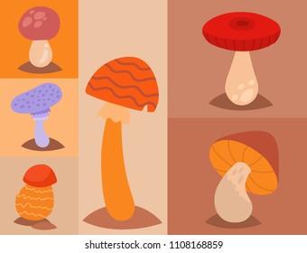 Mushrooms fungus agaric toadstool different art style design fungi vector illustration red hat
