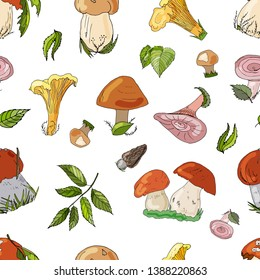 Mushrooms hand draw vector seamless pattern. Isolated sketch organic food drawing backgrond. Boletus, chanterelle, yellow boletus, rough boletus, russula, coral miky cap, forest foliage.