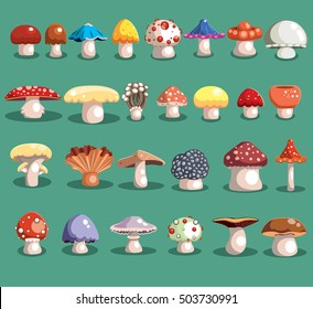 Mushrooms set. Different mushrooms. Mushrooms vector illustration set.Mushrooms for cook food and poisonous mushrooms. Mushrooms set for game.