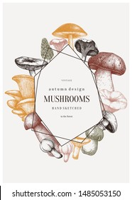 Mushrooms trendy design. Autumn frame with abstract elements. Forest plants sketches. Perfect for recipe, menu, label, icon, packaging. Vintage mushrooms background. Healthy food illustration.