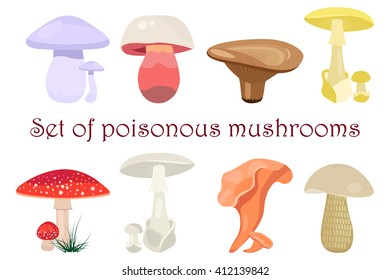 Mushrooms vector illustration set. Different types of mushrooms isolated on white background. Poisonous mushrooms flat style