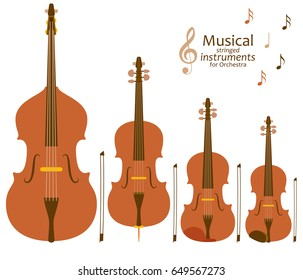 Musical stringed instruments for orchestra. Vector illustration