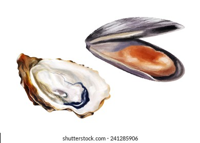 Mussel and oyster. Vector illustration.