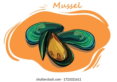 mussels isolated on background vector illustration