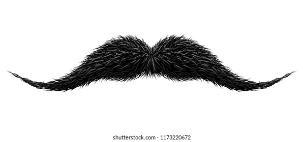 Mustaches for barbershop or Mustache Carnival. Detailed vintage black victorian mustache isolated on white