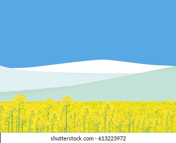 Mustard plant field and mountains