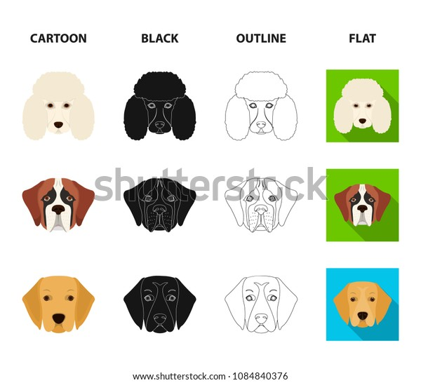 Muzzle of different breeds of dogs.Dog of the breed St. Bernard, golden retriever, Doberman, Dalmatian set collection icons in cartoon,black,outline,flat style vector symbol stock illustration web.