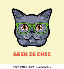 Muzzle of gray cat wearing in glasses. Cat geek. Geek is chic. Vector illustration.
