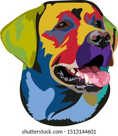 Muzzle Labrador Retriever Color Vector Illustration