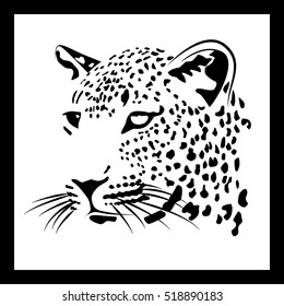 muzzle of a leopard on a white background in a frame