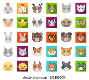 Muzzles of animals cartoon,flat icons in set collection for design. Wild and domestic animals vector symbol stock web illustration.