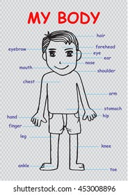 """My body"""", educational info graphic chart for kids showing parts of human body of a cute cartoon boy"""