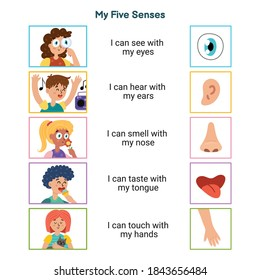 My five senses educational poster for kids. Sight, hearing, smell, taste, touch. Boys and girls demonstrating five human senses. Kids set for learning material. Vector illustration