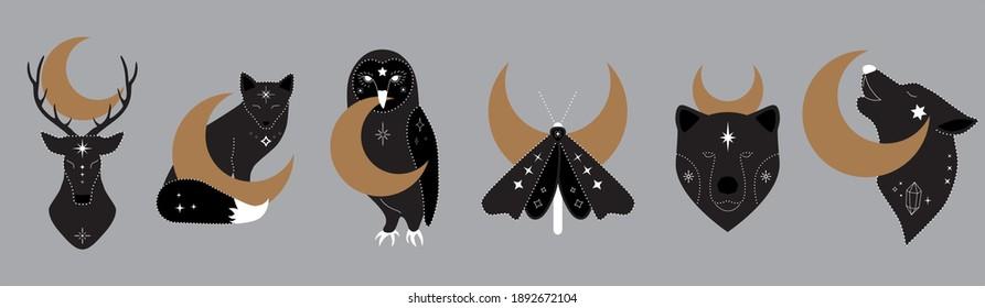 mystic collection of  woodland animals with crescent moon. Moth, bear, wolf, fox, deer, owl. Celestial elements. Vector magic animal set. Boho Woodland Wildlife