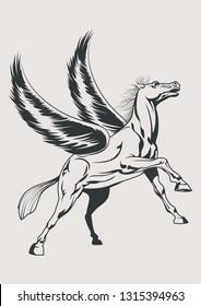 Mythological White Winged Horse Pegasus Isolated Sketch Drawn