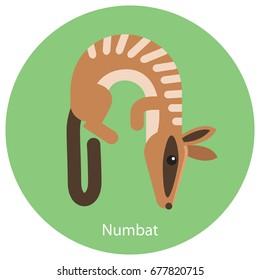 N is for Numbat. Alphabet in form of animals. Flat design illustration
