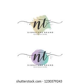 N T NT Initial logo template vector