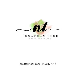 N T NT Initial watercolor logo on white background. Logo template vector