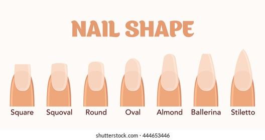 Nail forms. Female manicure. Set kinds of nails. Fashion nail shape. Icons nail shape. Collection of kinds of nails. Fashion trends. Vector illustration.