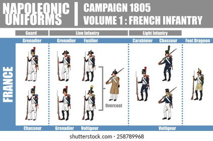 Napoleonic Uniforms Illustration Infographic Chart, Campaign 1805, Volume 1 French Infantry, Isolated on White Background, EPS 10 Vector