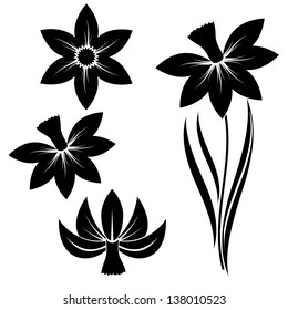 narcissus flower silhouette with three different heads vector set