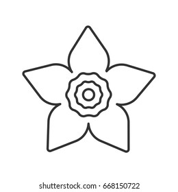 Narcissus, jonquil head linear icon. Flowering plant thin line illustration.Garden spring flower contour symbol. Vector isolated outline drawing