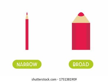 Narrow and broad antonyms word card flat vector template. Flashcard for english language learning. Big and small opposites concept. Thick and thin pencil cartoon illustration with typography