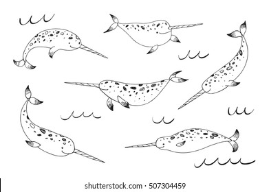 narwhal whale vector line set