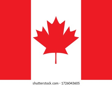 The national flag of Canada, with colored maple leaves m