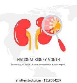 National kidney month concept. Design for web banners etc. in flat style, vector