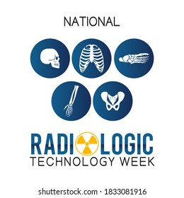 National Radiologic Technology Week Vector Illustration. Suitable for greeting card, poster and banner.