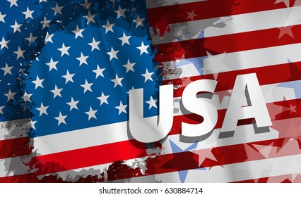 National USA (United States of America) flag, vector