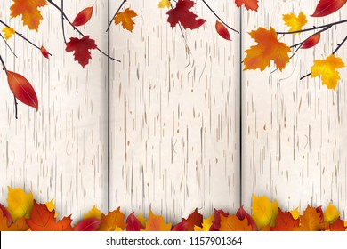 Natural Autumn background design. Autumn leaf fall, autumnal falling red, yellow, orange and brown leaves on white wooden background. Vector autumnal foliage fall of maple leaves.