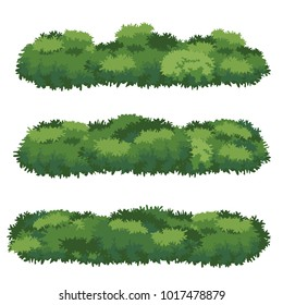 Natural bush vector