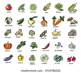 Natural colors. Vegetables, mushrooms, grass and roots. Proper nutrition. Vegan, vegetarian set of icons with vegetables.  Vegetable food. Vector isolated image.