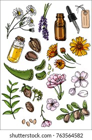 Natural cosmetics and medicine. A set of herbs and flowers painted black line on a white background. Chamomile, lavender, jars, shea, aloe vera, shea butter, flax, cherry, Calendula, Jojoba